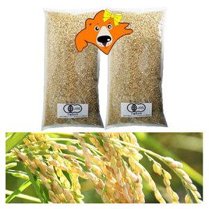 米 2kg 送料無料 有機玄米 2kg(1kg×2)有機米 玄米 お試し 米 2キロ(ゆめぴりか米・おぼろづき米・きたくりん米) 混植米 有機 農産物 北海道米 価格 2680円 お試し 米 北海道産米 無農薬 米