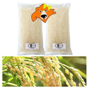 米 2kg 送料無料 有機白米 2kg(1kg×2)有機米 白米 お試し 米 2キロ(ゆめぴりか米・おぼろづき米・きたくりん米) 混植米 有機 農産物 北海道米 価格 2680円 お試し 米 北海道産米 無農薬 米