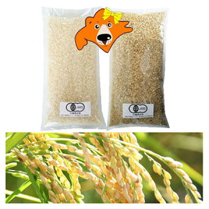 有機白米 精米 1kg 送料無料 有機米 玄米 1kg お試し米 2キロ(ゆめぴりか米・おぼろづき米・きたくりん米) 混植米 有機 米 2kg(1kg×2)農産物 北海道米 価格 2680円 お試し 米 北海道産米 無農薬 米