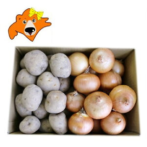 じゃがいも 男爵いも 送料無料 玉ねぎ 野菜セット 価格3580円 北海道産 だんしゃくいも たまねぎ 10kg(各5kg)Lサイズ