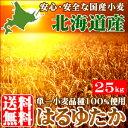 【北海道産/単一原料小麦100%使用】【送料無料】はるゆたか100大袋(25kg)【材料 小麦粉 パン お菓子 料理】