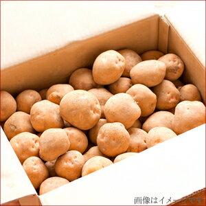新じゃがいも送料無料北海道産じゃがいも食べ比べセット5kg(キタアカリ3kg・インカのめざめ2kg)【5キロきたあかり北あかり北光新じゃがジャガイモ薯イモ産地直送旬インカの目覚め野菜セットいんかのめざめ詰め合わせ】
