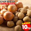 野菜セット ギフト 送料無料 北海道産 じゃがいも じゃが玉セット キタアカリ5kg(LMサイズ)&玉ねぎ5kg(Lサイズ)合計1…