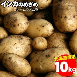 今季出荷開始新じゃが じゃがいも 北海道産 送料無料 千歳ファーム・ウメムラ 完熟 インカのめざめ【S M Lサイズ】1箱10kg【10kg 10キロ 10kg インカの目覚め 新じゃがいも ジャガイモ いも 芋 薯