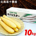 お歳暮 野菜 ギフト2019年度 出荷開始送料無料 北海道産 長芋 新世代野菜 ネバリスター(10kg)【ながいも 長いも 長イ…