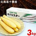 お中元 2019年度 出荷開始送料無料 北海道産 長芋 新世代野菜 ネバリスター(3kg)【ながいも 長いも 長イモ 芋 自然薯 …