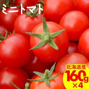 今季出荷開始トマト 送料無料 北海道産 南幌町明るい農村ネットワーク ミニトマト(ギフト用/160g×4p入り)【アイコ あいこ ラブリー藍 プチトマト フルーツトマト 甘いトマト 贈り物 高糖度