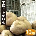 北海道産雪蔵じゃがいも(とうや・男爵・キタアカリ・メークイン)Lサイズ10kg【着日指定可10kg産地直送越冬じゃがいも北海道産だんしゃくきたあかりジャガイモ】