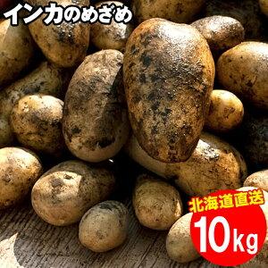 2021年ご予約承り中!11月出荷開始新じゃが 送料無料 北海道産 インカのめざめ【S〜2L混合】1箱10キロ入り【10kg 10キロ 10kg インカの目覚め いんかのめざめ インカ 甘い 小さい ジャガイモ 新じ