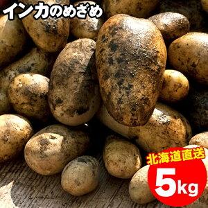 今季出荷開始中!新じゃが じゃがいも 送料無料 北海道産 インカのめざめ【S〜2L混合】1箱5キロ入り【5kg 5キロ 5kg インカの目覚め いんかのめざめ インカ 甘い 小さい ジャガイモ 新じゃがい