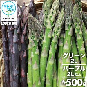 2021年ご予約承り中 5月出荷開始送料無料 北海道長沼産 イエスクリーン栽培 グリーン(2L)&パープル(2L以上)各500g 合計1kg【1kg 1キロ 1kg アスパラ あすぱら アスパラガス グリーン パープル 緑