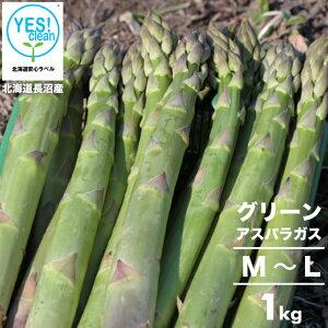2021年ご予約承り中 5月出荷開始送料無料 北海道長沼産 イエスクリーン栽培 グリーンアスパラ(M〜L)1kg【1kg 1キロ 1kg アスパラ あすぱら アスパラガス グリーン 緑 お取り寄せ ギフト 旬 産