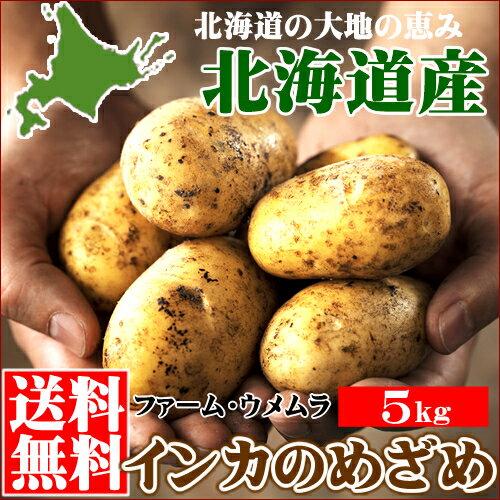 新じゃが 送料無料 北海道産 じゃがいも 千歳ファーム・ウメムラ 完熟 インカのめざめ【S M Lサイズ】1箱5.0kg【じゃがいも 新じゃが インカの目覚め いも 薯 ジャガイモ 北海道産 まとめ買い お取り寄せ】