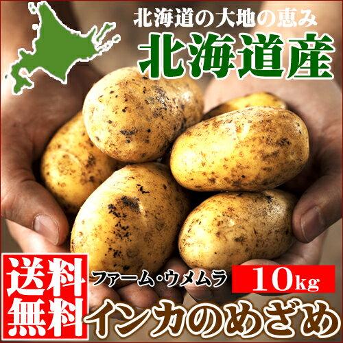 新じゃが 送料無料 北海道産 じゃがいも 千歳ファーム・ウメムラ完熟 インカのめざめ【S M Lサイズ】1箱10kg【新じゃがいも ジャガイモ インカの目覚め いも 芋 薯 野菜セット 農家直送 お取り寄せ】