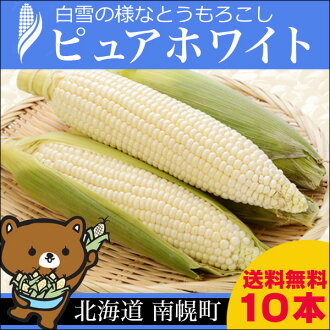 2017 year book available in August, shipping starts from Hokkaido, white corn pure white (10 pieces) nanporo town bright rural network