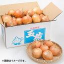 北海道札幌市 岩波農園の玉ねぎ 札幌黄 5kg Lサイズ 1玉160g以上