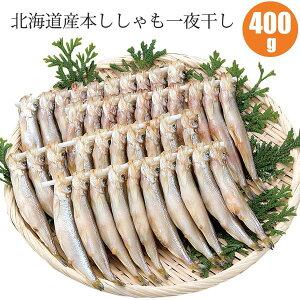 北海道産本ししゃも一夜干し400g(本ししゃもメス40尾)ギフトに北海道産本ししゃも一夜干しセット 送料無料 海鮮ギフト 魚ギフト お歳暮 御歳暮 早割 内祝い 御祝い 御礼 お取り寄せ 食べ