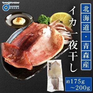 父の日 ギフト プレゼント イカ いか 冷凍 北海道産 青森県産 スルメイカ 一夜干し 1枚 魚介類 シーフード BBQ バーベキュー お取り寄せ 訳あり 海鮮