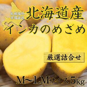 インカのめざめ 5kg 新 じゃがいも 送料無料 / ジャガイモ インカ 馬鈴薯 じゃがいも 北海道 札幌中央卸売市場 インカの目覚め