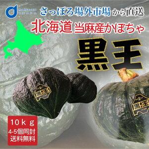 送料無料 北海道産かぼちゃ 黒王 10kg(4-5玉) / 北海道 かぼちゃ 南瓜 ハロウィン かぼちゃ 当麻産 スイーツ
