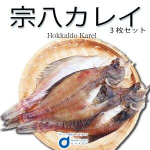 送料無料 北海道産 宗八カレイ 3枚セット / カレイ かれい 干物 おつまみ 開き 一夜干し 御歳暮 グルメ 食品ロス