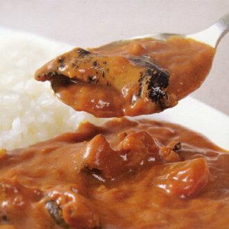 Crushed Curry [Hokkaido souvenir] fs04gm