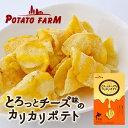 Fujiya185 pac01