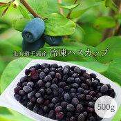 北海道産冷凍ハスカップ1パック約500g