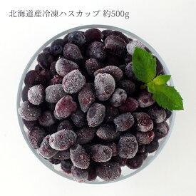 北海道産 冷凍ハスカップ1パック 約500g 【冷凍商品】 ※こちらの商品は冷凍の商品の為、冷蔵品を同梱する場合は別途送料がかかります