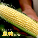 みなみ農園 とうもろこし恵味(めぐみ) 10本入(お届け8/11以降)