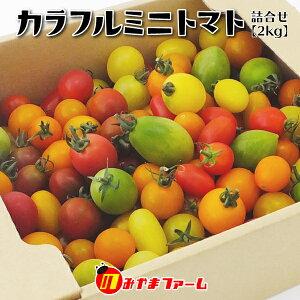 【産地直送品・送料込】のみやまファーム カラフルミニトマト 詰め合わせ 2kg