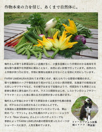 https://image.rakuten.co.jp/hokkaido-omiyage/cabinet/nousan/ume/customer_2.jpg