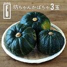 ファームウメムラ坊ちゃんかぼちゃ3玉