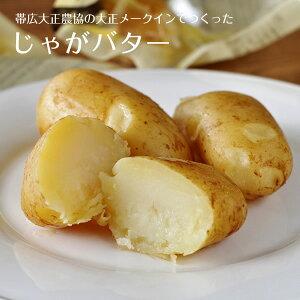 【予告! 送料300円割引→8月15日のご注文に限る】大正メークインでつくったじゃがバター 5個入
