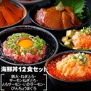 海鮮丼 12食セット(マグロ漬け2p・ネギトロ2P+サーモンネギトロ2p+トロサーモン2p+びんちょうマグロ2P+イカサーモン2…