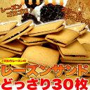 レーズンごろごろ★高級レーズンサンドどっさり30個/送料無料/スイーツ/洋菓子/常温便/