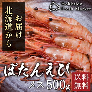 ボタンエビ メス 500g (約9尾入り) BLサイズ 海老 えび 年末年始 刺身 北海道 お取り寄せ グルメ 送料無料