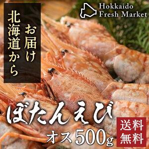 ボタンエビ オス 500g (10〜12尾入り) BLサイズ 牡丹海老 ぼたんえび 刺身 お取り寄せ グルメ 海鮮丼 寿司