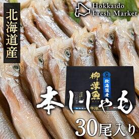 北海道産本ししゃも オス 30尾 柳葉魚 干物 北海道 プレゼント グルメ ギフト 食品 贈り物 お土産 海鮮 鮮魚 お取り寄せ お返し お祝い 魚 贈答