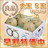 共撰夕張メロン良品大玉5玉(1ケース)(6月〜8月上旬お届け)