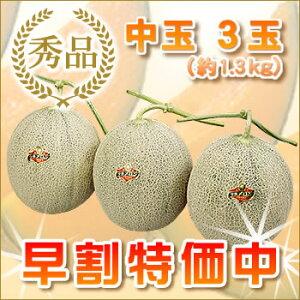 共撰夕張メロン秀品中玉3玉(6月〜7月お届け)