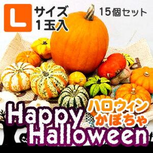 ハロウィンかぼちゃセット15個入(Lサイズのかぼちゃ1個入)本物生カボチャ 北海道 お土産 土産 みやげ おみやげハロウィン 2019