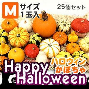 ハロウィンかぼちゃセット25個入(Mサイズのカボチャ)本物生カボチャ 北海道 お土産 土産 みやげ おみやげハロウィン 2019