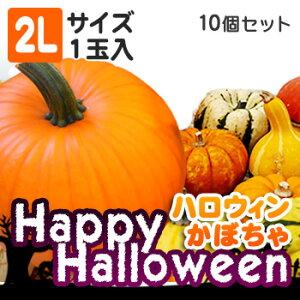 ハロウィンかぼちゃセット10個入(2Lサイズ1個入)本物生カボチャ 北海道 お土産 土産 みやげ おみやげハロウィン 2019