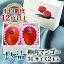 【7月28日以降お届け】北海道産 神内マンゴー 3Lサイズ 良品 2玉 【アップルマンゴー アーウィン種】【送料無料】【…
