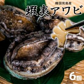 高品質 韓国ワンド産 蝦夷アワビ 6個 [あわび/鮑]