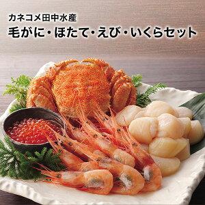 [カネコメ田中水産]毛がに・ほたて・えび・いくらセット お刺身で楽しめるセット