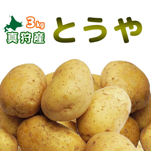 [2018年秋収穫 とうや 3kg] 北海道真狩産じゃがいも「とうや」ジャガイモ 新じゃがいも 新じゃが 新ジャガ