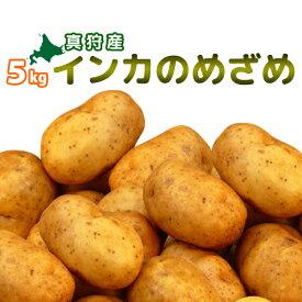 [2020年収穫 インカのめざめ 5kg] 北海道真狩産じゃがいも「インカの目覚め 5kg」 ジャガイモ