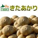 [2019秋収穫 キタアカリ 5kg] 新じゃがいも 北海道真狩産「きたあかり」北あかり ジャガイモ 新じゃが 新ジャガ